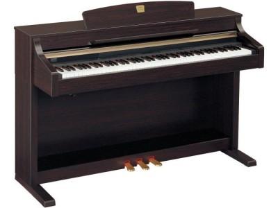 Yamaha CLP-330 / C / M Rosewood ** Rosewood
