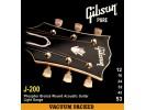 Gibson PRIBOR J200 Phos Bronze Acous .012-.053 Bronze
