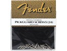 Fender PRIBOR Pickguard Mounting Screws. Chrome (24)