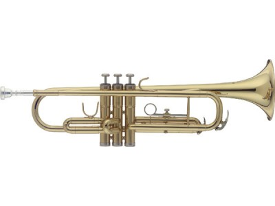 Stagg WS-TR215S