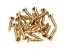 Fender PRIBOR Pickguard Mounting Screws. Gold (24) *
