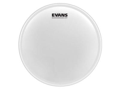 Evans B10UV1