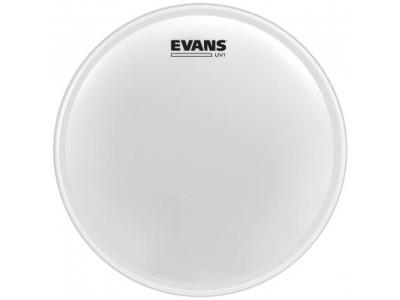 Evans B14UV1