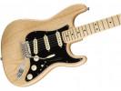 Fender American Pro Stratocaster MN NAT