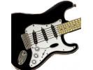Fender Fender™ Stratocaster™ Keychain, Black
