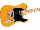 Fender American Pro Tele, MN, BTB električna gitara električna gitara