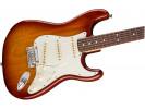 Fender American Pro Strat RW SSB