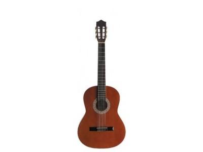 RASPRODAJA - gitare STAGG C546
